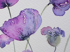Watercolour painting PURPLE POPPIES original art by artist Amanda Hawkins 14 x 22 cm, unframed, unmounted. Floral art, botanical painting