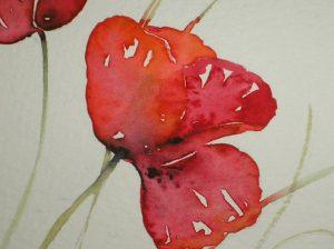 Watercolour painting BRIGHT POPPIES original art by artist Amanda Hawkins 22 x 14 cm unframed, unmounted. Flowers, floral, botanical, poppy