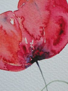 Watercolour painting LARGE RED POPPIES original art by artist Amanda Hawkins 14 x 22 cm unframed, unmounted. Red flowers, floral, poppy art