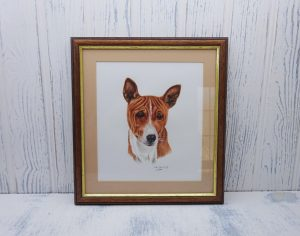 Watercolour painting 'BASENJI' ~ original art by artist Amanda Hawkins, mounted & framed, detailed Basenji African hunting dog portrait