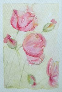 Watercolour painting PRETTY POPPIES original art by artist Amanda Hawkins 9 x 14 cm unframed unmounted. Pink poppy flowers, floral botanical